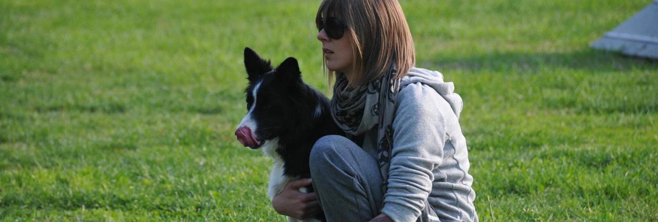 Novara: apertura scuola agility dog