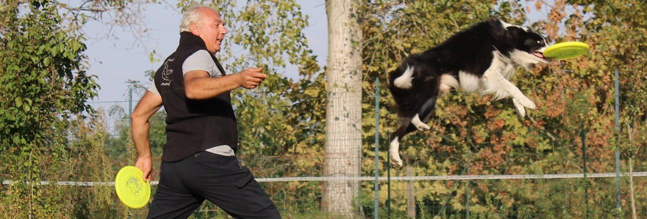 Novara 16 settembre: giornata gratuita Disc Dog e Dog Dance