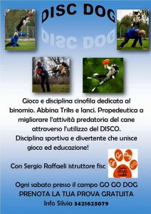 DISC DOG NOVARA VERCELLI