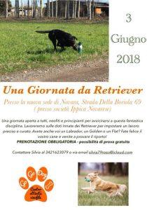 retrieving a Novara