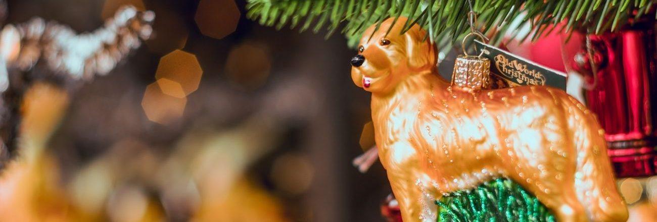 Al via il concorso fotografico di Natale!